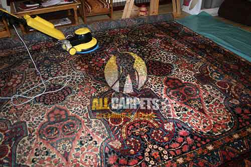 Brisbane Persian Rug Cleaning & Washing