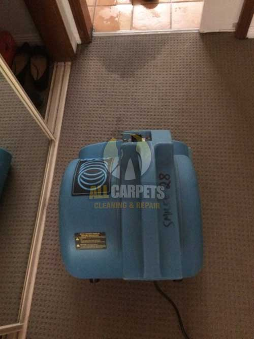 Hollywell bathroom water damaged carpet before repairing