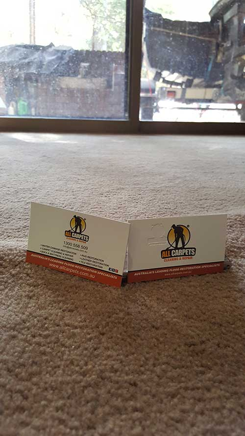 carpet cleaning and repairing