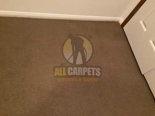 Pasadena brown carpet before cleaning