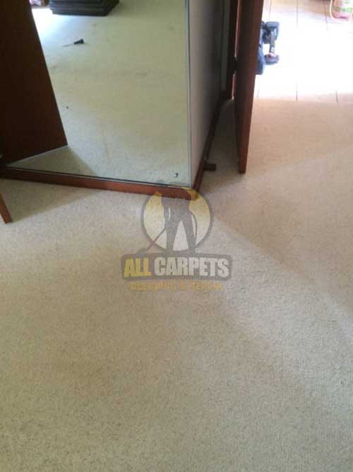 Adelaide carpet surface after steam cleaning