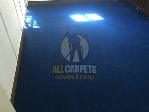 Greenwith dark blue carpet after cleaning