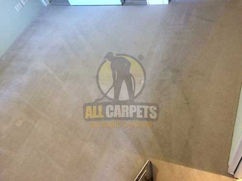 dirty carpets with furniture indentations needed to be cleaned and repaired