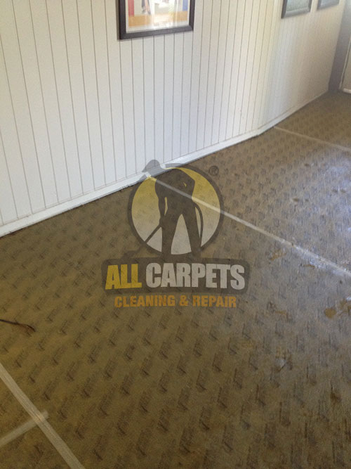 After repairing and installing carpet using best ways and equipments Perth