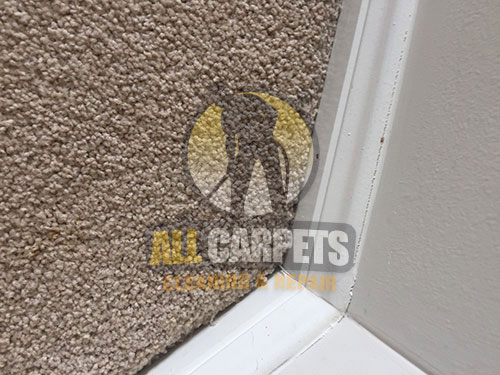 After repairing and installing carpet using the best methods and tools in