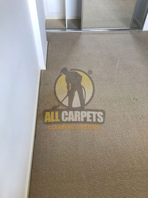 after cleaning and repairng a brown Campbelltown carpet and getting an amazing result