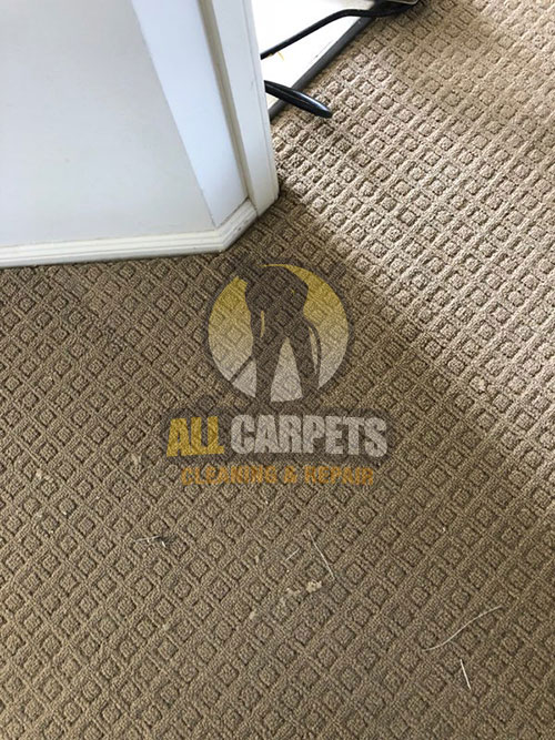 before and after cleaning repairng brown carpet in